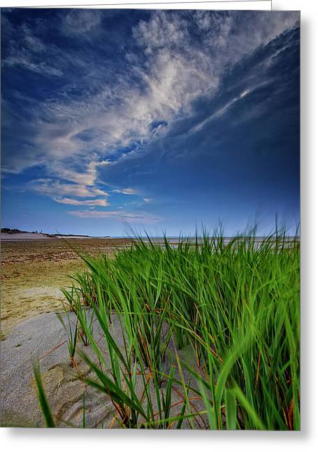 Chapin Beach Greeting Card by Rick Berk