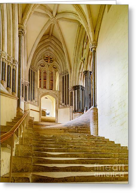 Chapter House, Wells Cathedral Greeting Card