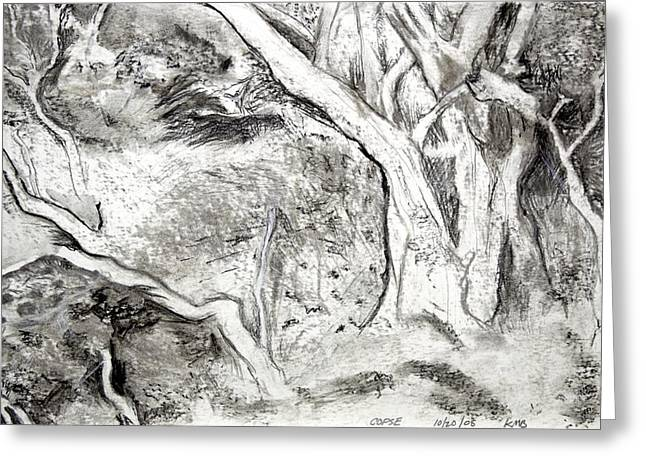 Charcoal Copse Greeting Card