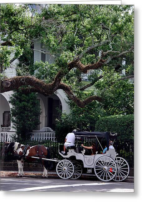 Charleston Buggy Ride Greeting Card by Skip Willits