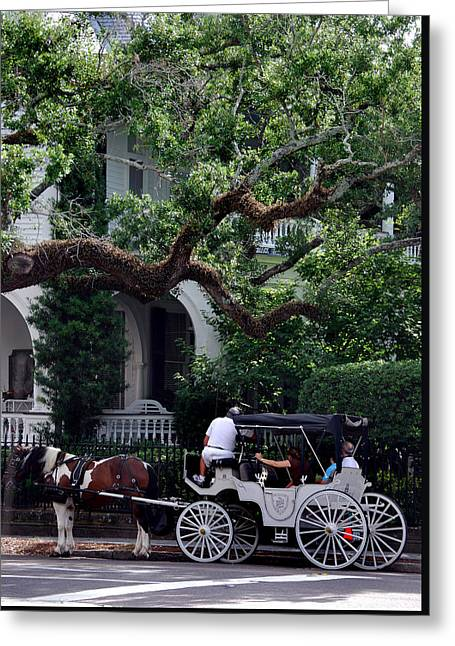 Charleston Buggy Ride Greeting Card by Skip Willits
