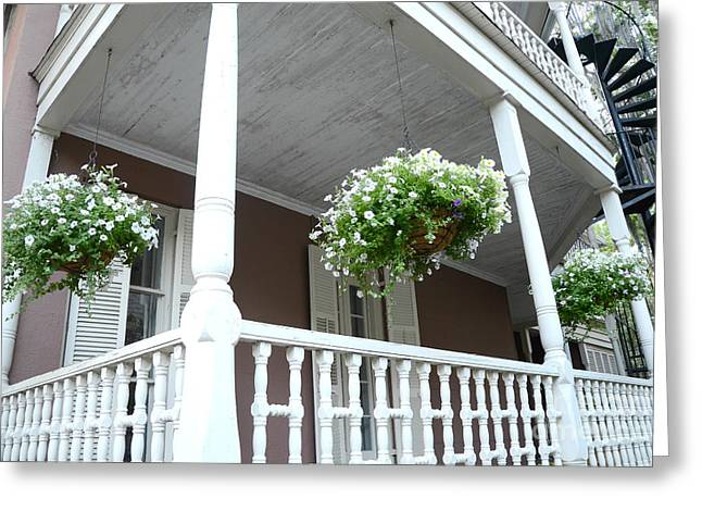 Charleston Historical District Front Porch Flowers - Charleston Homes Architecture Greeting Card