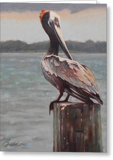 Charleston Pelican Greeting Card