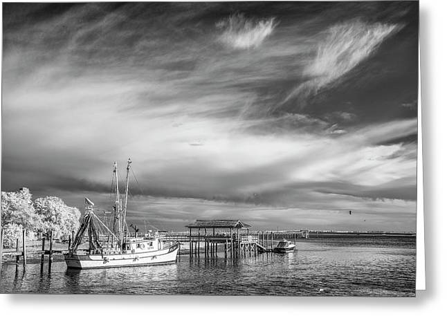 Charleston Shrimp Boat Greeting Card