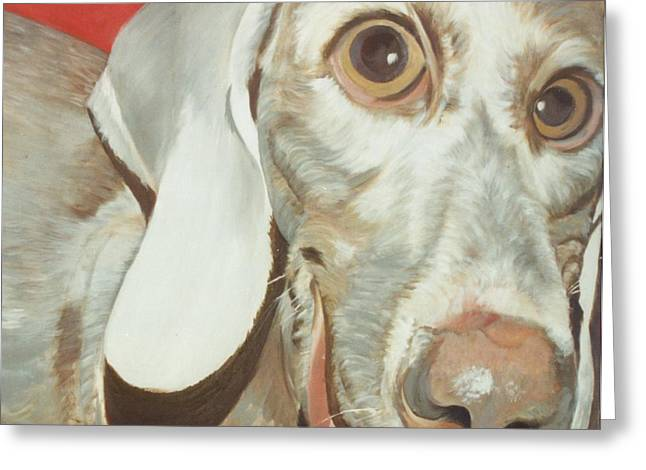 Charlie Greeting Card by Linda Deater