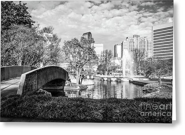 Charlotte Marshall Park Black And White Photo Greeting Card by Paul Velgos
