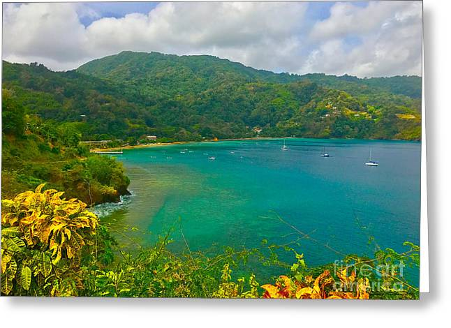 Charlotteville View  Greeting Card by Carey Chen