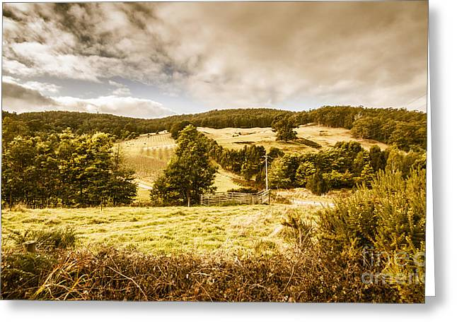 Charming Outback Country Setting Greeting Card by Jorgo Photography - Wall Art Gallery
