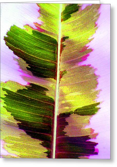 Chartreuse Greeting Card by Carolyn Stagger Cokley