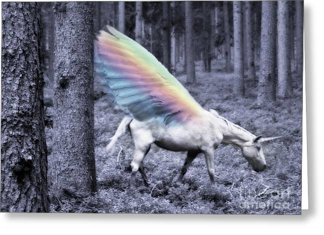 Chasing The Unicorn Greeting Card