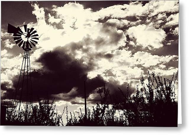 Chasing Windmills Greeting Card