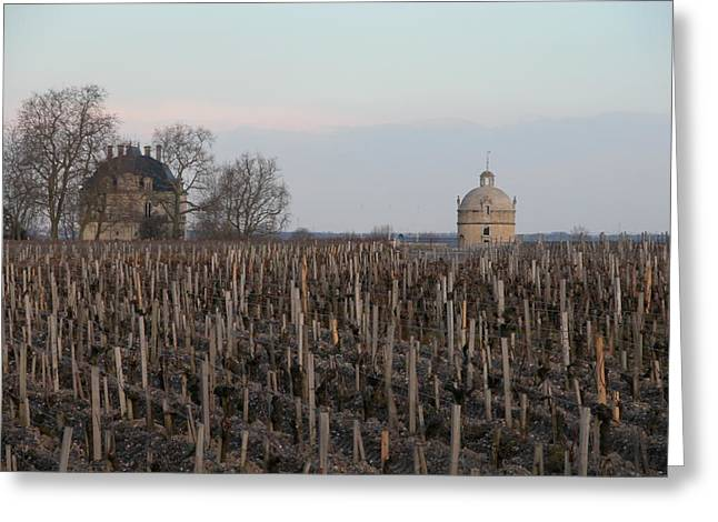 Chateau Latour Greeting Card by Rodger Lindquist