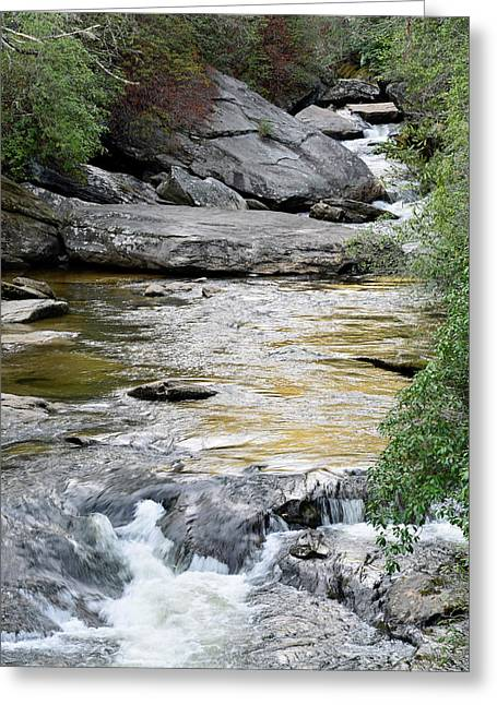 Chattooga River In Sc Greeting Card by Bruce Gourley