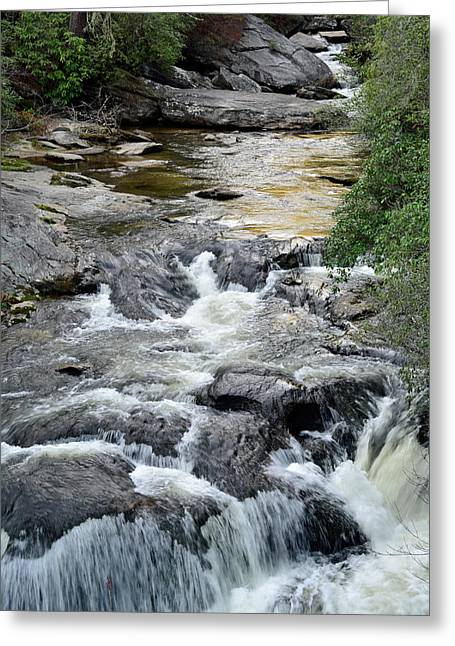 Chattooga River In South Carolina Greeting Card by Bruce Gourley