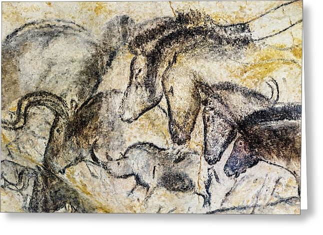 Chauvet Horses Aurochs And Rhinoceros Greeting Card