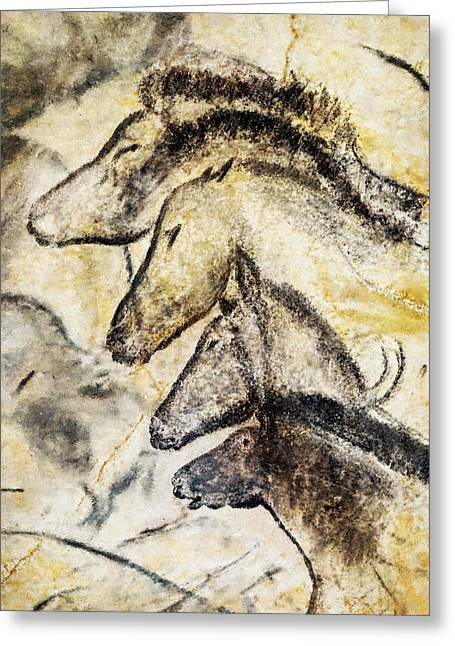 Chauvet Horses Greeting Card