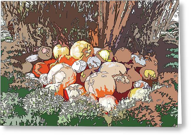 Cheekwood Gardens Pumpkin Patch Cutout With Poster Edges Equalized Greeting Card
