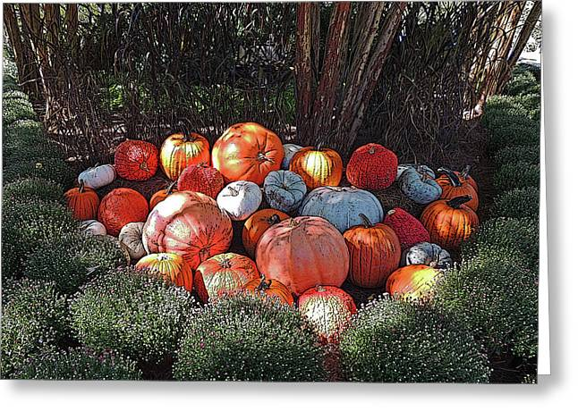 Cheekwood Gardens Pumpkin Patch With Poster Edges Greeting Card