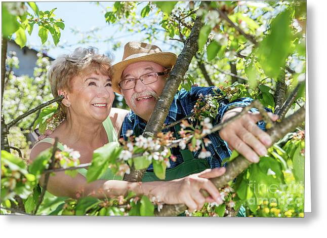 Cheerful Senior Couple Portrait Among Tree Branches. Greeting Card