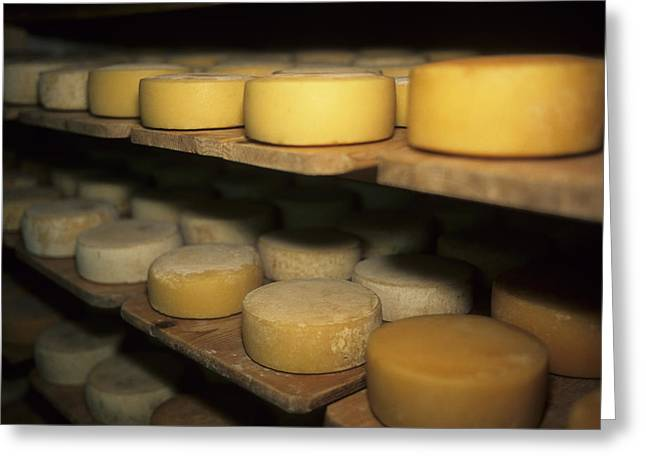 Cheese Ripens On Shelves In A Cave Greeting Card