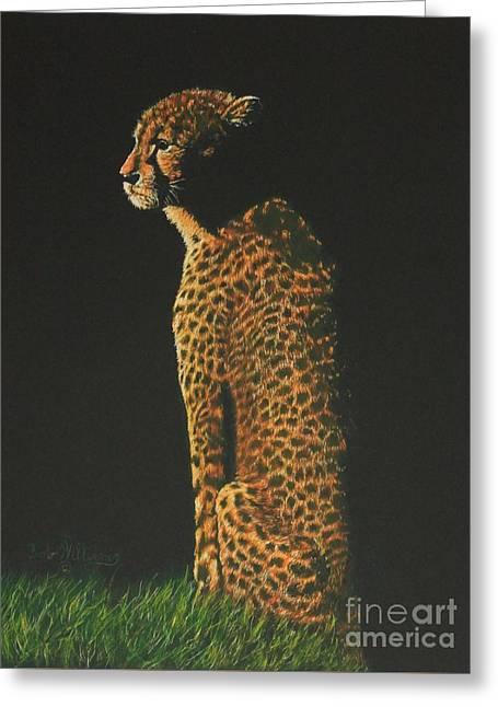 Cheetah At Sunset Greeting Card