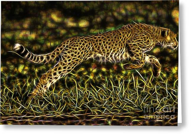 Cheetah Collection Greeting Card by Marvin Blaine