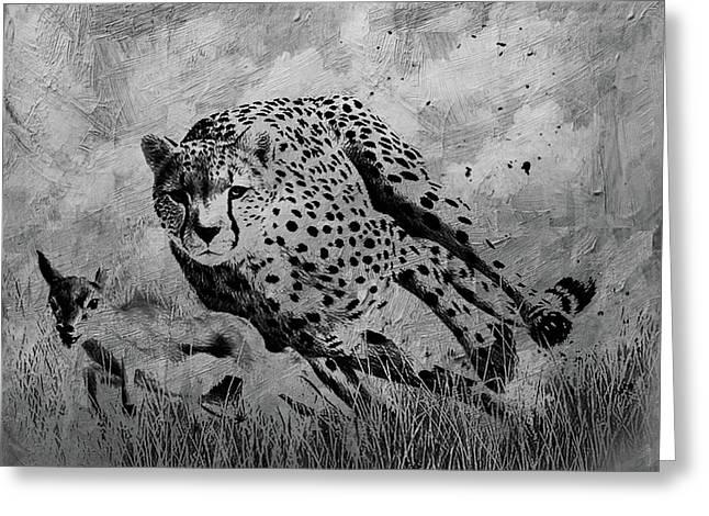 Cheetah Hunting Deer  Greeting Card by Gull G