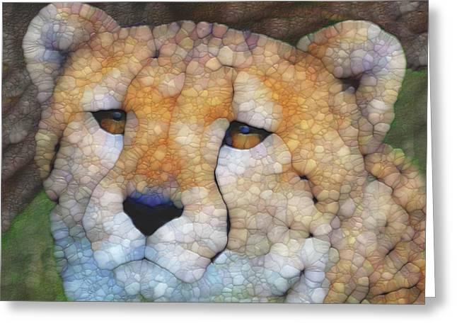 Cheetah Greeting Card by Jack Zulli