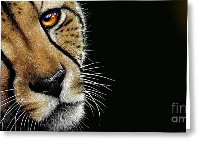 Cheetah Greeting Card by Jurek Zamoyski