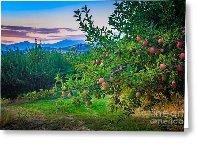 Chelan Apple Branch Greeting Card