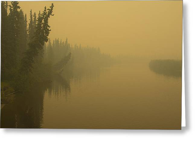 Chena River Greeting Card
