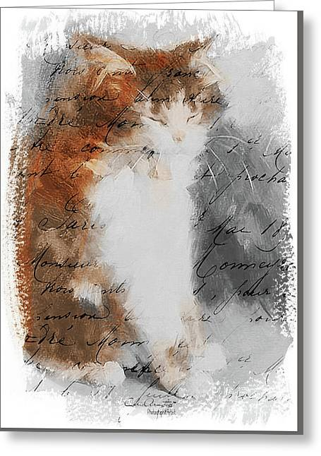 Cher Chat ... Greeting Card