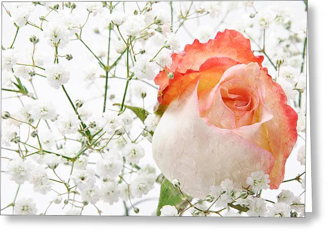 Blooming Mixed Media Greeting Cards - Cherish Greeting Card by Andee Design