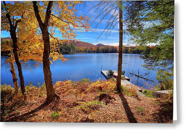 Cherished View Greeting Card by David Patterson