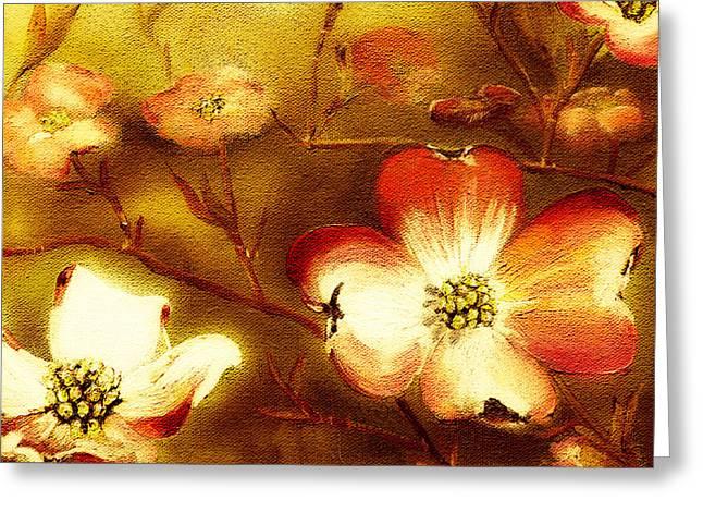 Cherokee Rose Dogwood - Glow Greeting Card