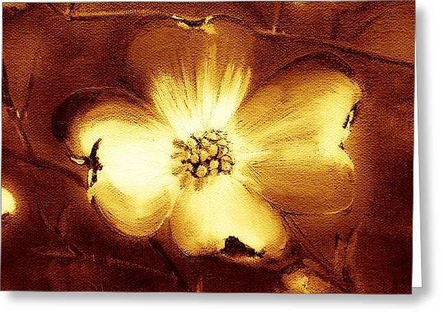 Cherokee Rose Dogwood - Single Glow Greeting Card by Jan Dappen
