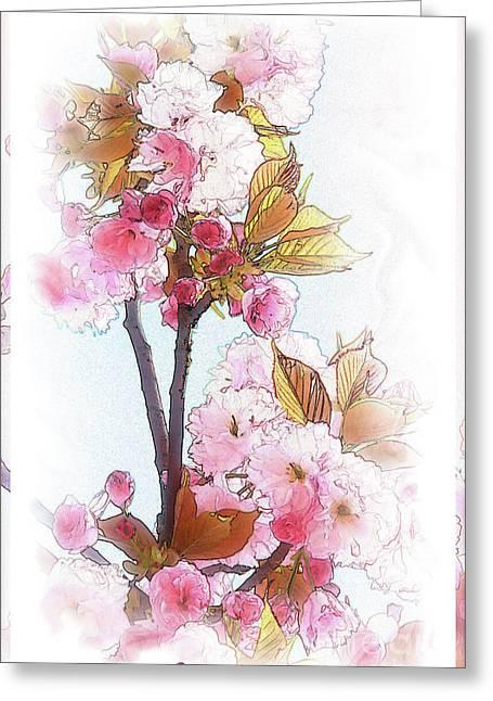 Cherry Blossom Greeting Card by Heinz G Mielke