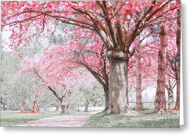 Greeting Card featuring the photograph Cherry Blossom Path by Charline Xia