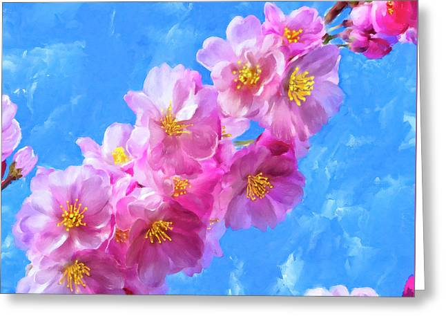 Cherry Blossom Pink - Impressions Of Spring Greeting Card by Mark Tisdale