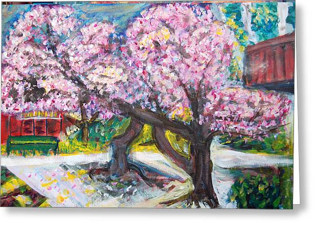 Cherry Blossom Time Greeting Card by Carolyn Donnell