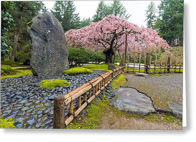 Cherry Blossom Tree By Natural Rock Greeting Card by Jit Lim