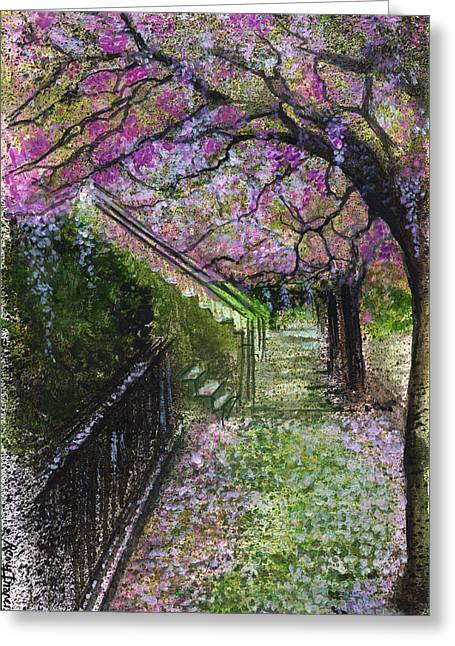 Cherry Blossom Walk Greeting Card by Remy Francis
