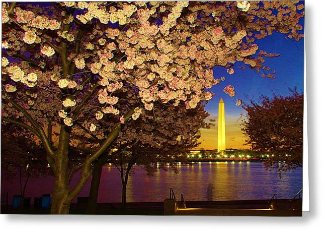 Cherry Blossom Washington Monument Greeting Card