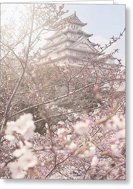 Cherry Blossoms At Himeji Castle Greeting Card by Margaret Goodwin