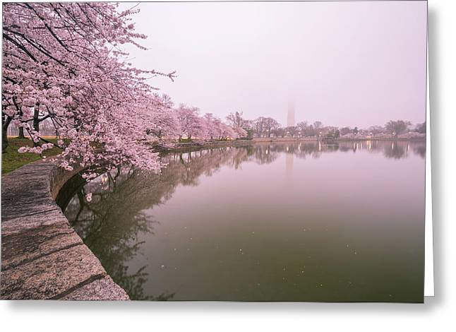 Cherry Blossoms In Fog Greeting Card