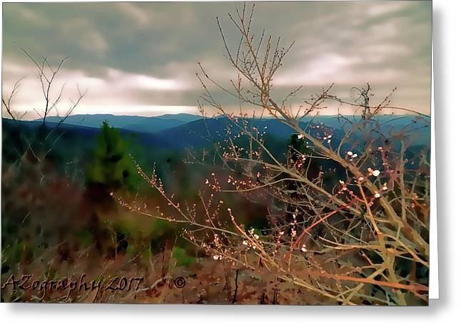Cherry Blossoms On Sky Line Drive Greeting Card by Melissa Hicks