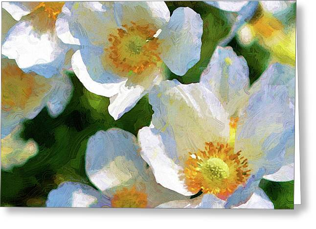 Cherry Blossoms Greeting Card by Stacey Chiew