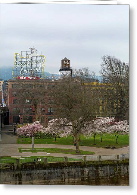 Cherry Blossoms Trees In Portland Old Town Greeting Card