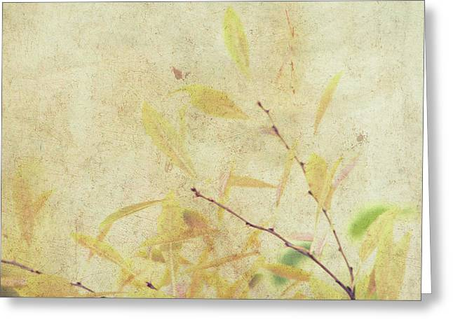 Cherry Branch On Rice Paper Greeting Card
