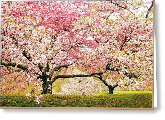 Cherry Delight Greeting Card by Jessica Jenney